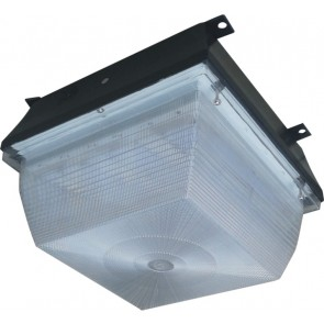 High Power LED Canopy