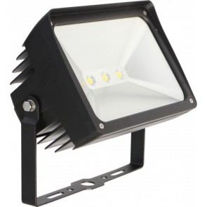 Orbit Flood Light, LED, Premium, 50W, 120-277V, 5000K, Cool White, Trunnion Mount - Bronze
