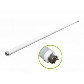 Orbit LED Light Bulb, T8, 4FT., 6500K-6750K